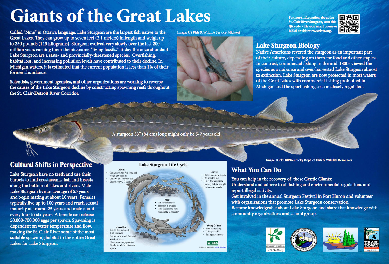 Giants-of-the-Great-Lakes