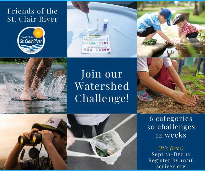 EducPage_Challenge1