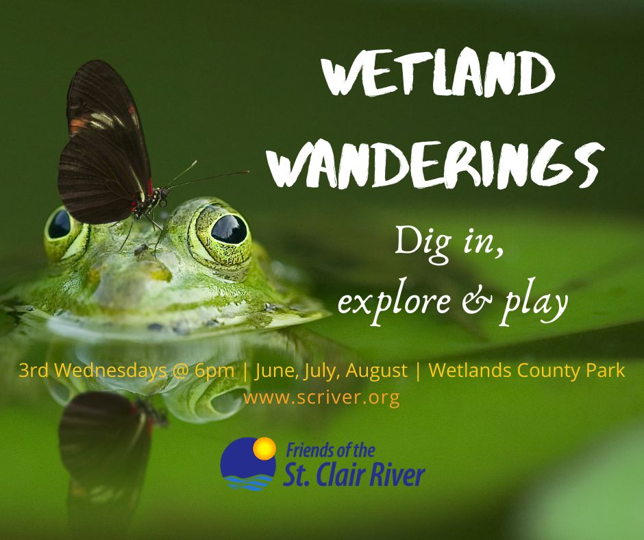 Wetland Wanderings 2021