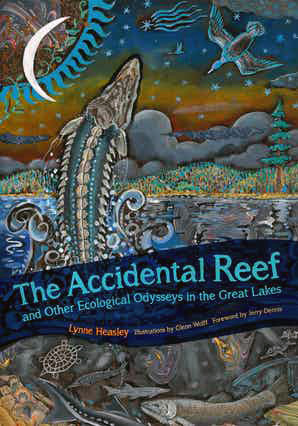 Accidental-Reef